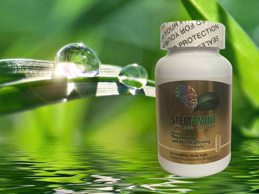 Tế bào gốc Stemamine